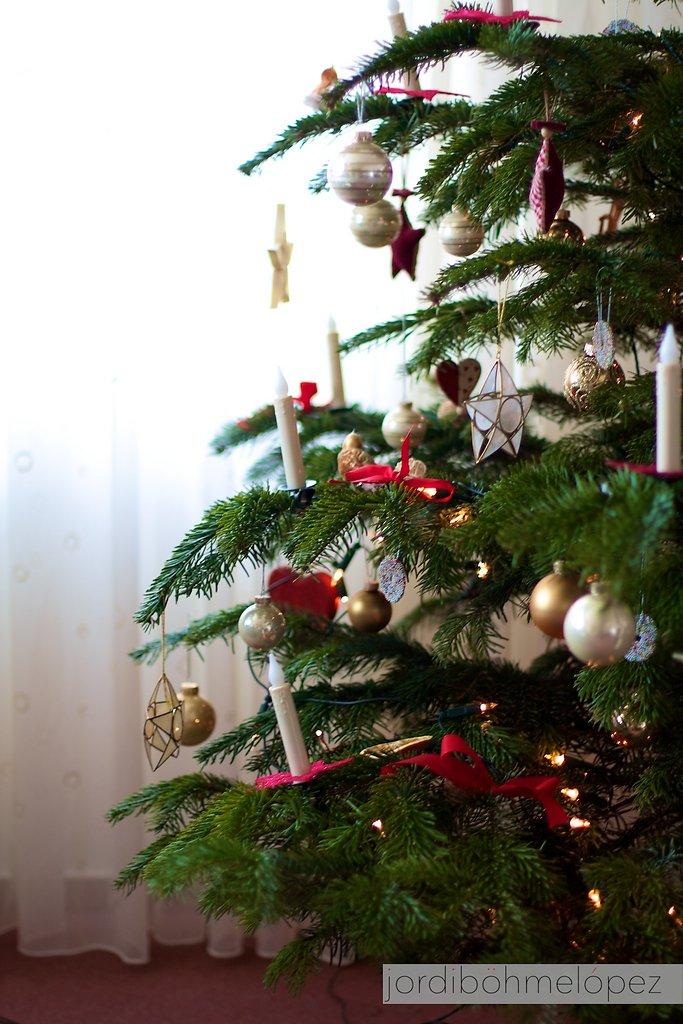 Weihnachtsbaum 2010